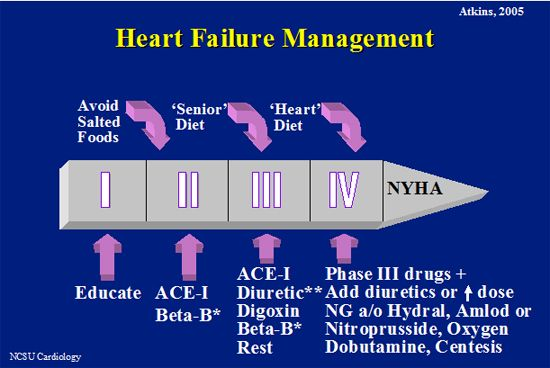 Canine Heart Failure Current Concepts Wsava2007 Vin