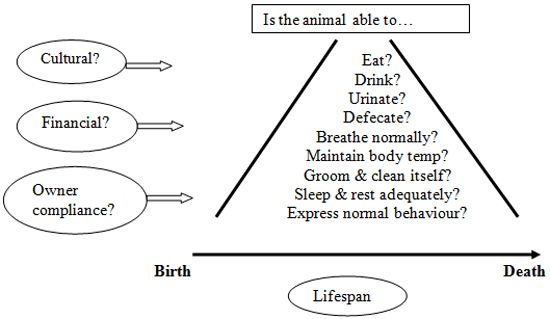 orem and roper Roper, logan and tierney model patient name: position on life span: neonate _____ geriatric date and time of assessment: activity of living  orem's model.