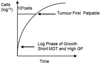 Figure 2. Gompertzian growth.