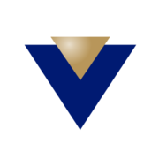 www.vin.com