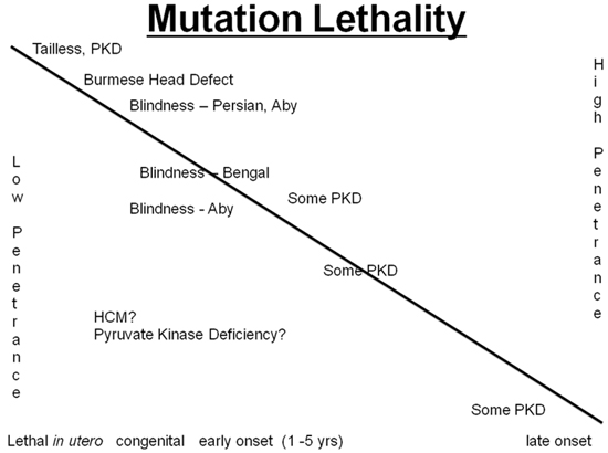 Figure 2. The slippery slope of mutation lethality