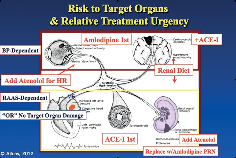 Figure 1. Risk of target organs dictates type and urgency of treatment